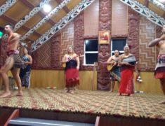Te Puia Rotorua