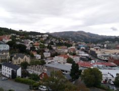 dunedin1 1000px 235x180 - Wolfgang Reviews South to North NZ