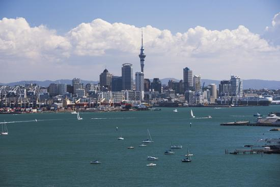 harbour - Fishing - Auckland Charter Boats