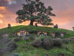 hobbiton 4 240x180 - Hobbiton Tour