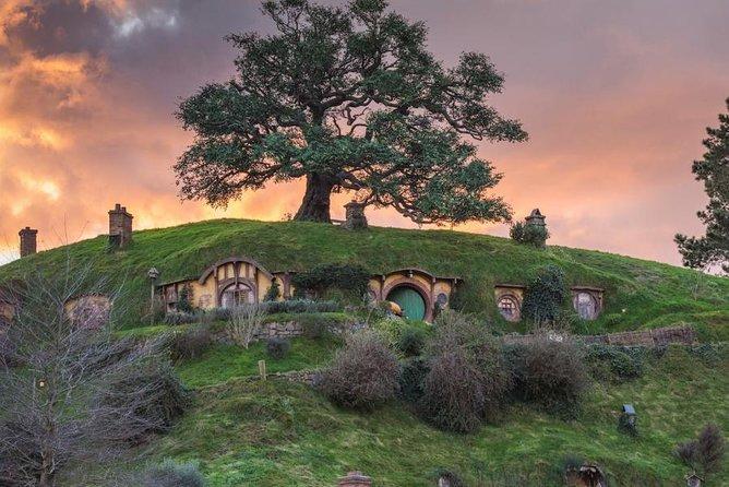 hobbiton 4 - Hobbiton Tour