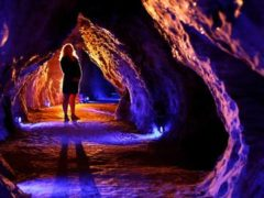 waitomo cave 240x180 - Waitomo Ruakuri Cave