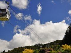 4108871904 37aa157371 o 240x180 - Skyline Rotorua