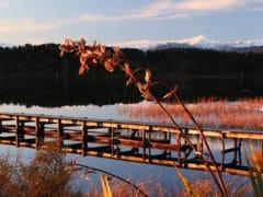 Scenic waterways 240x180 - Westcoast Scenic Waterways
