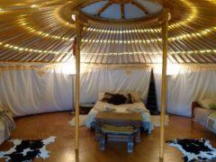Yurt 02 240x180 - Yurt Stay
