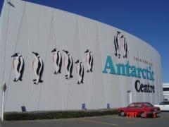 Exterior 9 240x180 - International Antarctic Centre
