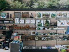 KiwiOriginal 240x180 - Riverside Markets