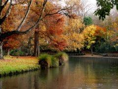 River 1 240x180 - Hagley Park