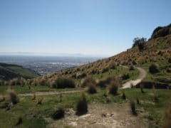 Trail 1 240x180 - Port Hills