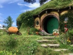 38208918874 01c6220e4f o 240x180 - Hobbiton Tours