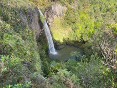 Bridal Veil Falls 06 240x180 - Bridal Veil Falls (Wairēinga Falls)