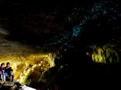 Green Glow Caves in New Zealand 6563152219 1 240x180 - Waitomo Caves