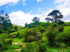 new zealand hobbiton movie set fantasy hobbiton 240x180 - Hobbiton Tours