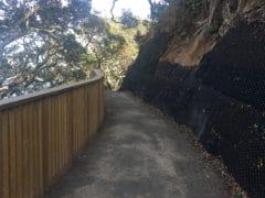 IMG 0107 240x180 - Mount Manganui (Mauao) Base Track