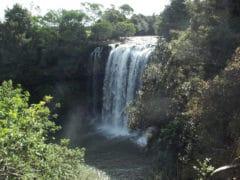 Rainbow Falls 240x180 - Rainbow Falls (Waianiwaniwa)
