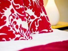 Palm Motel 05 240x180 - Blenheim Palms Motel